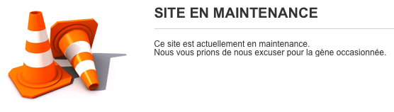 site en maintenance ref67